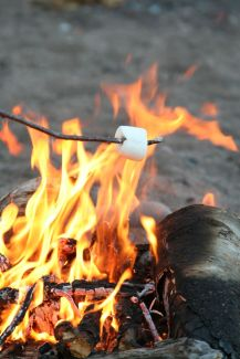 Roast that mallow!