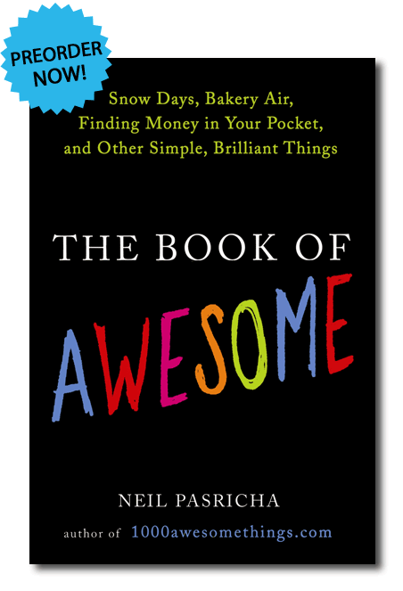 book of awesome amazon affiliate link